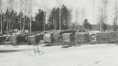 Tukkeja Petun Näsmalmin lahdessa vuonna 1932